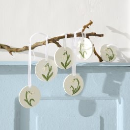 Hanger set van 6 Willmare wit/groen